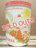 ct-130716-23 Strawberry Shortcake / 80's Tin Canister (M)