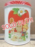 ct-130716-22 Strawberry Shortcake / 80's Tin Canister (S)