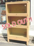 dp-150805-06 GLOBE-WERNICKE / Vintage Book Cabinet