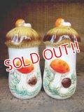 kt-120912-01 Sears / 70's Mushroom Salt & Pepper