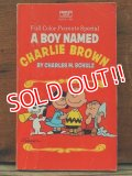 bk-131121-08 PEANUTS / 1971 A BOY NAMED CHARLIE BROWN!