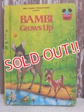 bk-150114-01 Bambi / 1979 Picture Book