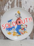ct-151213-17 Donald Duck,Goofy and Donald's Nephews / 70's Plastic Plate