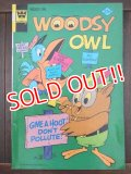 bk-170511-15 Woodsy Owl / Whitman 1974 Comic