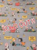 ct-170601-12 PEANUTS / 1970's Flat Sheet (Twin)