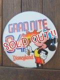 ct-171206-79 Disneyland / 1984 Grad Nite Pinback