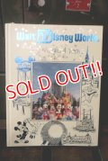 ct-180401-45 Walt Disney World / 20 Magical Yeas Book