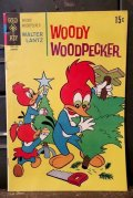 bk-131211-12 Woody Woodpecker / Gold Key 1970 Comic
