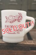dp-180508-37 FALMOUTH GOAT RACE / Anchor Hocking 1970's Mug