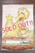 ct-180901-193 Big Bird / 1990's Poster