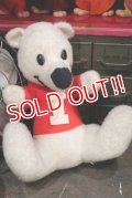 ct-181203-53 ICEE BEAR / 1970's Plush Doll