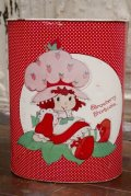 ct-1902021-10 Strawberry Shortcake / Cheinco 1980's Trash Box