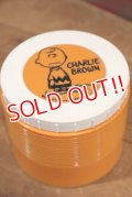 ct-190801-03 Charlie Brown / Thermos 1970's Plastic Jar
