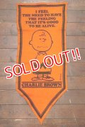"ct-191001-29 PEANUTS / 1960's Banner ""Charlie Brown"" Orange"