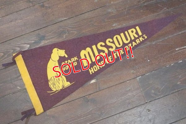 画像1: ct-200201-17 MISSOURI HOME OF THE OZARKS / Vintage Pennant