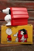 ct-210401-65 Snoopy and Doghouse / AVON 1970's Non-Tear Shampoo Bottle (Box)