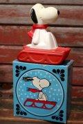ct-210701-30 Snoopy / AVON 1970's Snow Flyer Bubble Bath Bottle (Box)