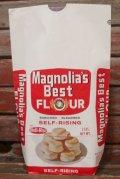 dp-210901-09 Magnolia's Best FLOUR / Vintage Paper Bag