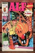 ct-200501-26 ALF / Comic 64 PAGES ANNUAL No.2 1989